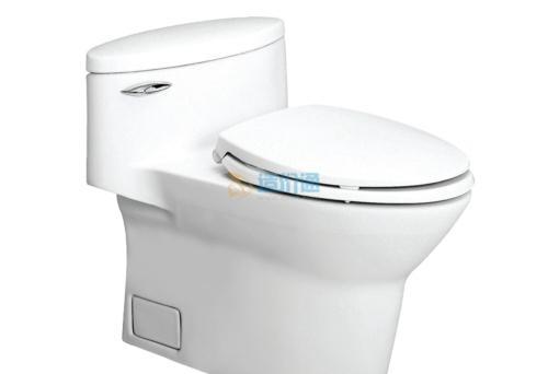 瑞芙连体坐便器(地排水)(白)含排污管(配盖板17183T-CP-0)图片