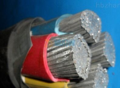 0.6/1KV铝芯聚氯乙烯绝缘聚氯乙烯护套电力电缆图片