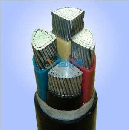 铝芯交联聚乙烯绝缘聚氯乙烯护套电力电缆图片