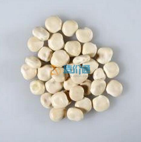 羽扇豆种子图片