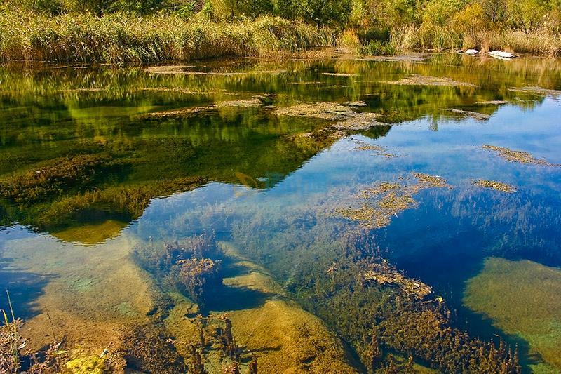 珠盘水景图片