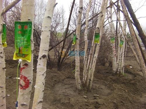 树木输液袋图片