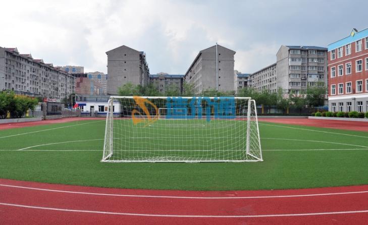 百慕达足球场专用草坪图片